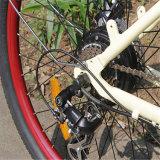 """Bicicleta eléctrica de la playa de la batería de litio de la venta caliente 26 """" (RSEB-1214)"""