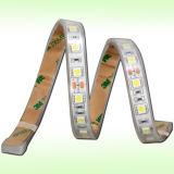60LEDs/M SMD5050 scaldano 3000k gli indicatori luminosi costanti bianchi della corda della corrente LED