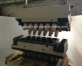 Máquina de Thermoforming do copo (PPTF-70T)