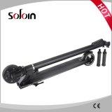 Piegare il mini motorino di mobilità dell'equilibrio di auto del motore elettrico 250W (SZE250S-6)