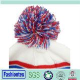冬の暖かいアクリルのジャカードおよび刺繍の帽子の編む帽子