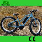 """놀람 선물 중앙 모터 26 """" 뚱뚱한 타이어 전기 자전거"""