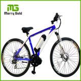 高品質中心モーターびん電池Ebikeか販売のための電気バイク