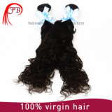 100% virgn Remy de la onda natural brasileña trama del pelo humano