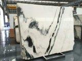 Piedra Natural Polished Panda Blanco Mármol Losas con vena negra en las ventas