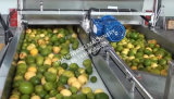 De automatische 2t/H Lopende band van het Vruchtesap