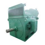 200kw a corrente alternata a tre fasi asincrona dei motori elettrici di tensione ad alta pressione del motore a corrente alternata 1500kw 6kv