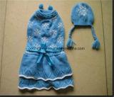 El invierno caliente del sombrero del animal doméstico y el conjunto de suéter