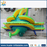 Diapositiva inflable del dinosaurio gigante profesional del surtidor para la venta con buen precio