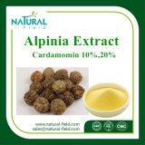 Haut, die Alpinia-Auszug P.E 98% /Alpinia P.E verwendet in den Kosmetik weiß wird