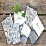 Каменный бумажный (RPD-200) богатый минеральный бумажный двойник Coated-200um
