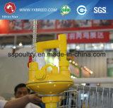 نوع آليّة دجاجة قفص تصميم لأنّ طبقة مزرعة ([أ4ل120])