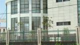 Frontière de sécurité résidentielle 2 de jardin de garantie décorative élégante de haute qualité de Haohan