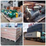 Gran caudal de la bomba centrífuga de agua (ES) / Limpieza Bomba de agua / Ciudad de residuos Bomba Tratamiento de Aguas