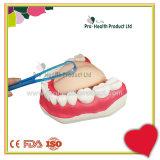 Щетка языка устно свежей чистки наборов инструментов зубоврачебной внимательности мягкая