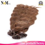 Remyの融合の毛の拡張自然なケラチンのカプセルは前にU/Nailの先端の毛の拡張人間100g純粋なマレーシアのケラチンを結んだ