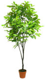 2015 Chine Fournisseur Plastique artificiel Indoor Bonsai Plants Tree
