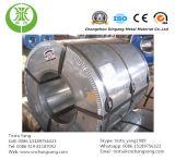 Bobina d'acciaio galvanizzata preverniciata modellata per costruzione (fogli del Ginkgo)