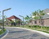 운동 측정기를 가진 옥외 15W LED 태양 가로등 WiFi CCTV 사진기