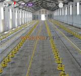 Alfrica Gebrauch-Licht-Stahlfertigzelle-Gebäude angestrichen