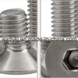 Fornecedor principal escareado do parafuso de tampão do soquete do hexágono do aço inoxidável 304 de China ASME/ANSI B 18.3