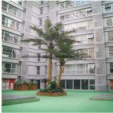 Пальмы Cyathea хобота искусственной стеклоткани украшения сада большие