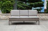屋外の家具(LN-2004)のための贅沢な現代枝編み細工品または藤のソファー