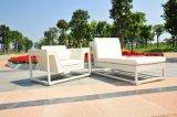 Sofà del rattan/singolo sofà impermeabile del sofà del giardino (SC-9601)