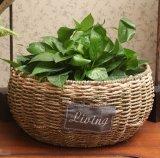 (BC-SF1012) Cesta ecológica de la flor de la paja hecha a mano respetuosa del medio ambiente