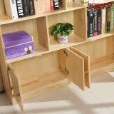 De moderne Boekenkast van de Slaapkamer van de Kinderen van het Ontwerp Stevige Houten (GSP9-033)