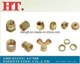 Montaggio maschio d'ottone dell'adattatore della sbavatura del tubo flessibile (1/2*1)