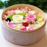 Flores naturais de seda preservadas rosas naturais