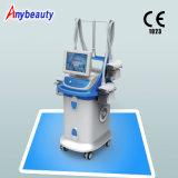Cryo vertical amincissant la machine amincissant SL-4 avec l'approbation médicale de la CE