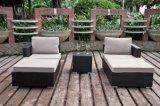Установленный салон Nicola напольного ротанга патио сада софы мебели Wicker (J383)