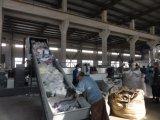 Plastica che ricicla macchina di granulazione e che ricicla l'espulsore di pelletizzazione