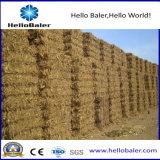 Hfst5-6 de beste Economische Pers van het Hooi voor de Elektrische centrale van de Biomassa