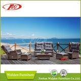Cadeira ao ar livre da mobília Chair/Rattan do Rattan (DH-608)