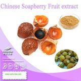 (40%, 70% de sapindoside) Extrait de fruit de soapberry chinois