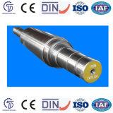 Kaltformung StahlRolls für Walzwerk