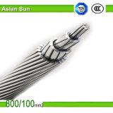 Fornitore di AAAC (tutti i conduttori della lega di alluminio) per la riga di trasmissione ambientale