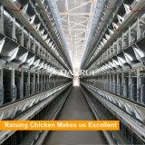 Cage de couche de batterie de cage de poulet de matériel de ferme de Chambre de poulet