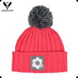 Зима картины Knit нервюры связала шарф шлема с сплетенным ярлыком