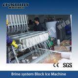 Pesci di Focusun che congelano la macchina del blocco di ghiaccio di 15tpd 20tpd