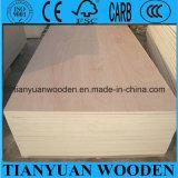 Shandong-billig lamelliertes Handelsfurnierholz für Stuhl-Sitz