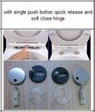 Siège des toilettes de forme de D avec la charnière de fin de doux