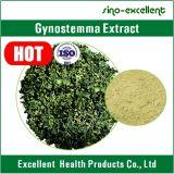 100% Gynostemma natural P.E. com o Gypenosides para reduzir a gordura do sangue