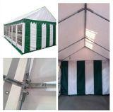 tende della tenda foranea del partito del PVC di 5m*6m (PT0506)