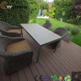 Assoalho quente do jardim verde da proteção ambiental (TW-02)
