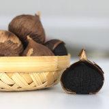 Nagelneuer organischer schwarzer Knoblauch für Großverkauf 900g