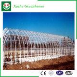 Landwirtschafts-/Werbungs-/Garten-Plastikgewächshaus mit Kühlsystem